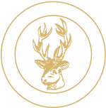 Track & Trail Safaris New Zealand
