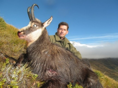 Track n Trail Safaris-New Zealand-Chamois (14)