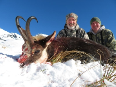 Track n Trail Safaris-New Zealand-Chamois (52)