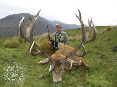 Track n Trail Safaris-New Zealand-exceptional red stag (12)