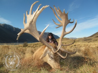 Track n Trail Safaris-New Zealand-exceptional red stag (13)