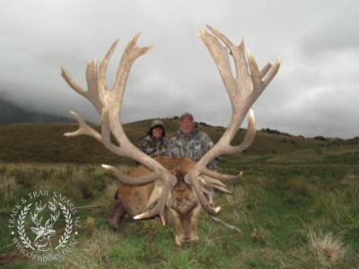 Track n Trail Safaris-New Zealand-exceptional red stag (27)