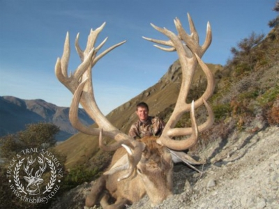 Track n Trail Safaris-New Zealand-exceptional red stag (28)