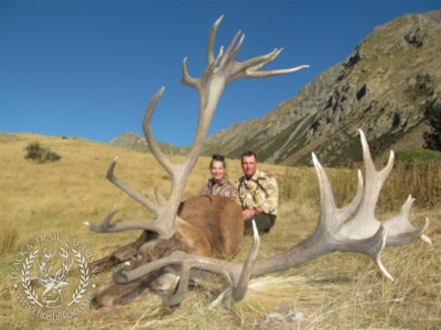 Track n Trail Safaris-New Zealand-exceptional red stag (3)