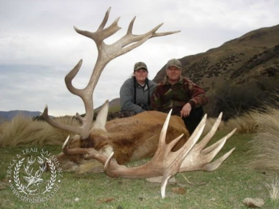 Track n Trail Safaris-New Zealand-exceptional red stag (43)