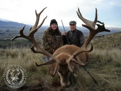 Track n Trail Safaris-New Zealand-exceptional red stag (44)