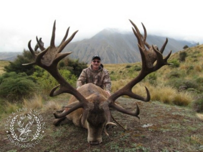 Track n Trail Safaris-New Zealand-exceptional red stag (8)