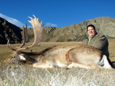 Track n Trail Safaris-New Zealand-fallow (2)
