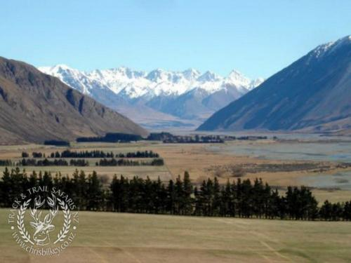 Track n Trail Safaris-New Zealand (15)