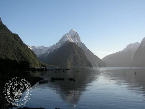 Track n Trail Safaris-New Zealand (26)