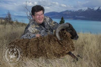 Track n Trail Safaris-New Zealand-ram goat (26)