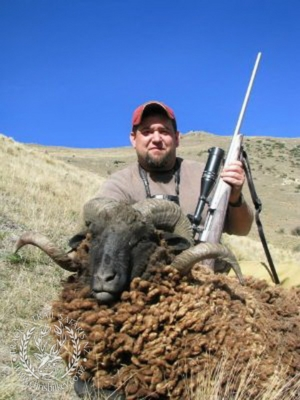 Track n Trail Safaris-New Zealand-ram goat (33)