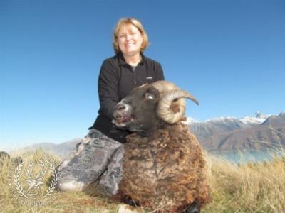 Track n Trail Safaris-New Zealand-ram goat (9)