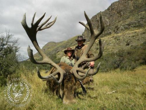 Track n Trail Safaris-New Zealand-red stag (46)