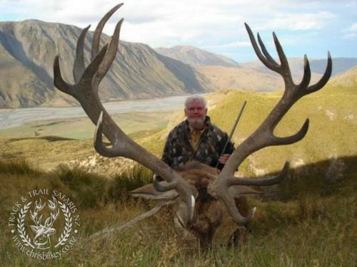 Track n Trail Safaris-New Zealand-red stag (57)