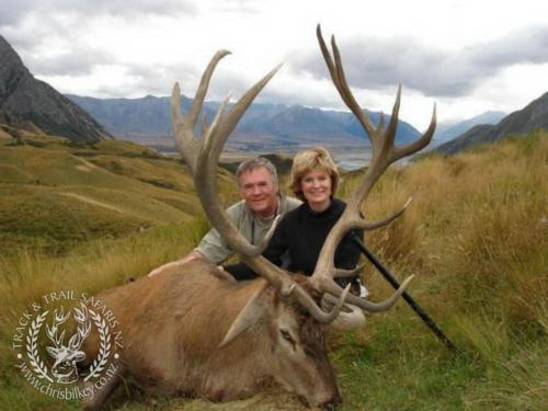 Track n Trail Safaris-New Zealand-red stag (62)