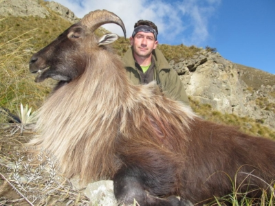Track n Trail Safaris-New Zealand-Tahr (10) (1)