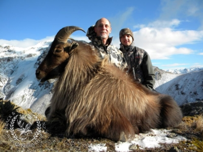 Track n Trail Safaris-New Zealand-Tahr (11) (1)
