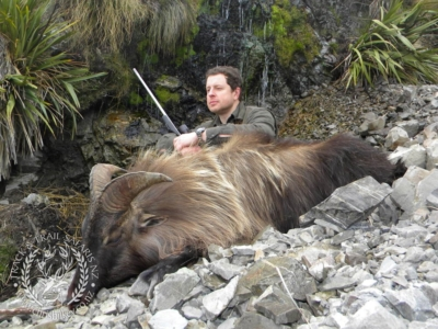 Track n Trail Safaris-New Zealand-Tahr (18) (1)