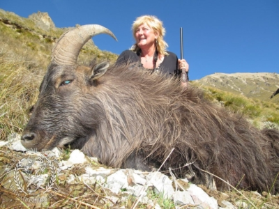 Track n Trail Safaris-New Zealand-Tahr (21) (1)