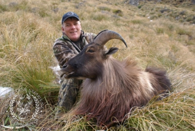 Track n Trail Safaris-New Zealand-Tahr (23) (1)