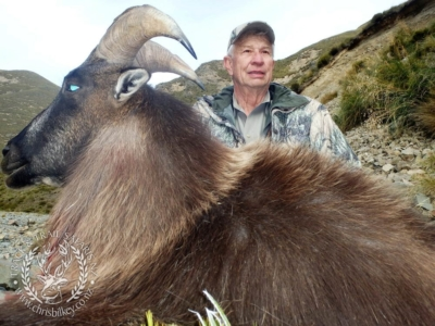 Track n Trail Safaris-New Zealand-Tahr (27) (1)