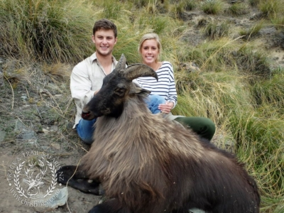 Track n Trail Safaris-New Zealand-Tahr (31) (1)