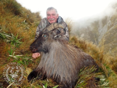 Track n Trail Safaris-New Zealand-Tahr (32) (1)