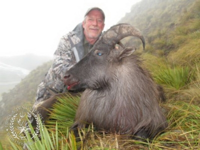 Track n Trail Safaris-New Zealand-Tahr (43) (1)