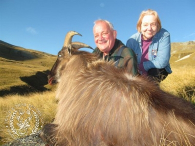 Track n Trail Safaris-New Zealand-Tahr (51) (1)