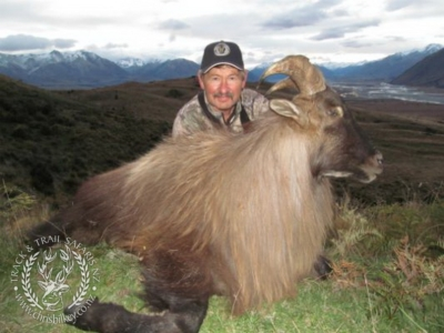 Track n Trail Safaris-New Zealand-Tahr (53) (1)