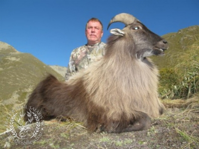 Track n Trail Safaris-New Zealand-Tahr (54) (1)
