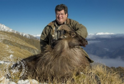 Track n Trail Safaris-New Zealand-Tahr (62) (1)