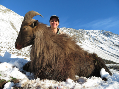 Track n Trail Safaris-New Zealand-Tahr (8) (1)